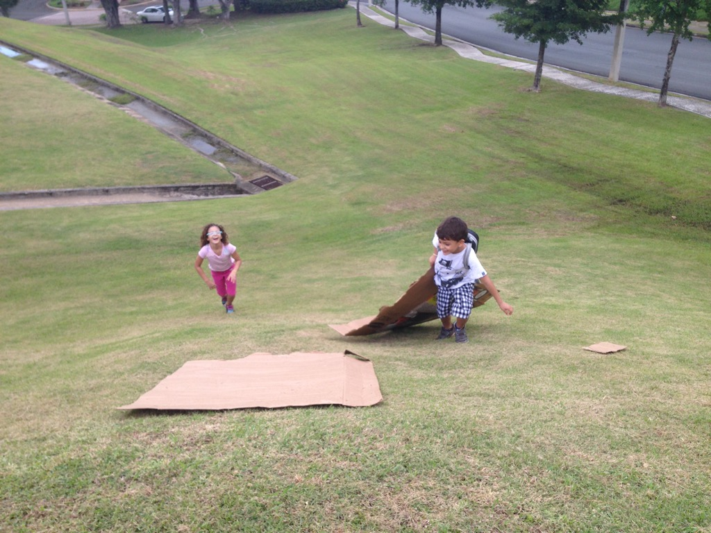 We recycle cardboard boxes and we slide downhill. Laughter, screaming and agitation are common.