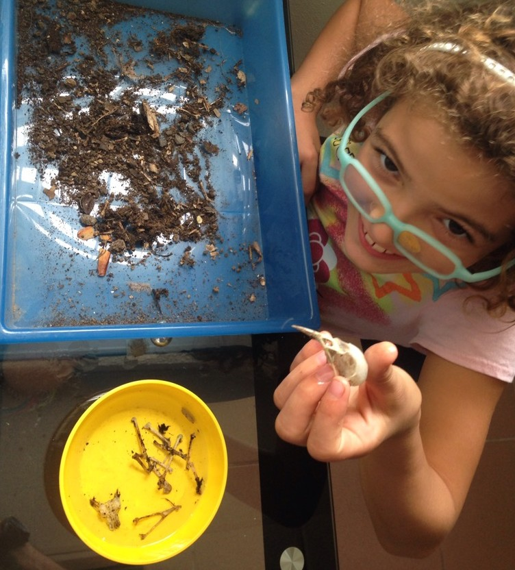 As we explore we often find and collect various objects and organisms. We identify them and try to reconstruct them.