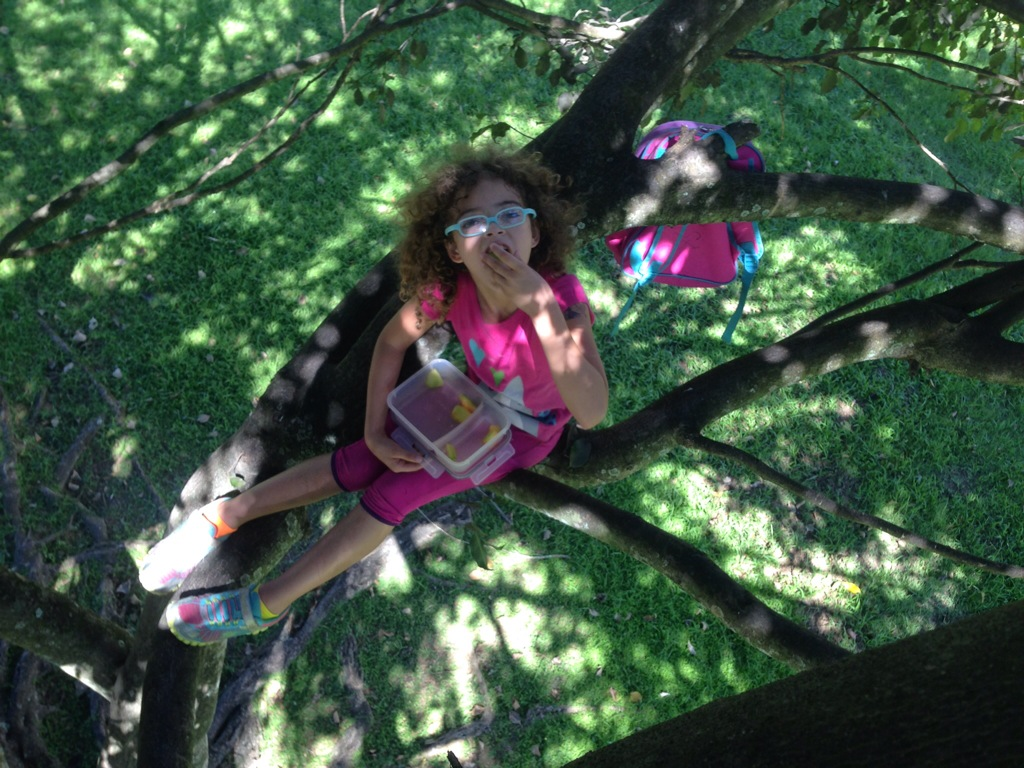 We sometimes have picnics in trees as well.